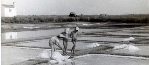 Récolte du sel vers 1960 sur le territoire actuel de la Réserve