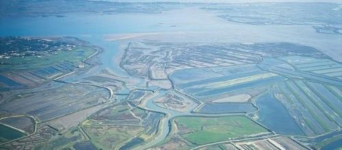 vue aérienne de la Réserve de Lilleau des Niges et des marais avoisinants
